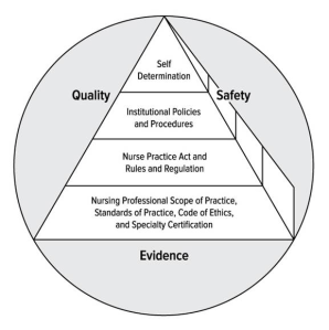 Regulation of professional nursing practice